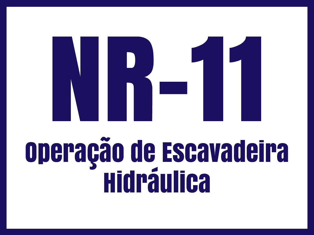 nr11f