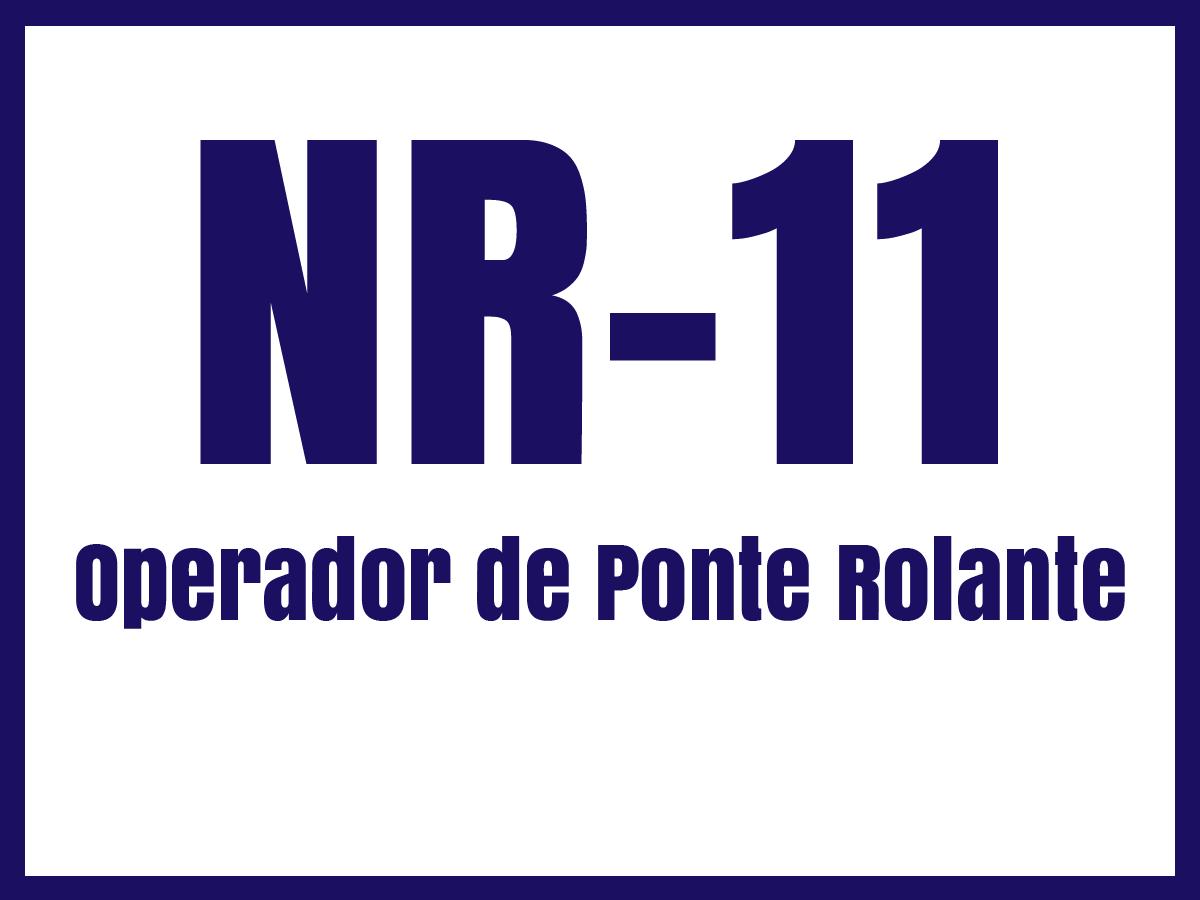 nr11g