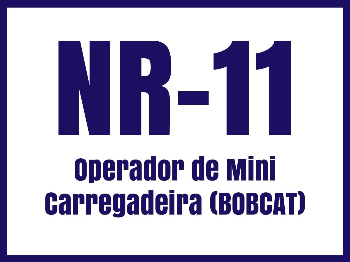 nr11m