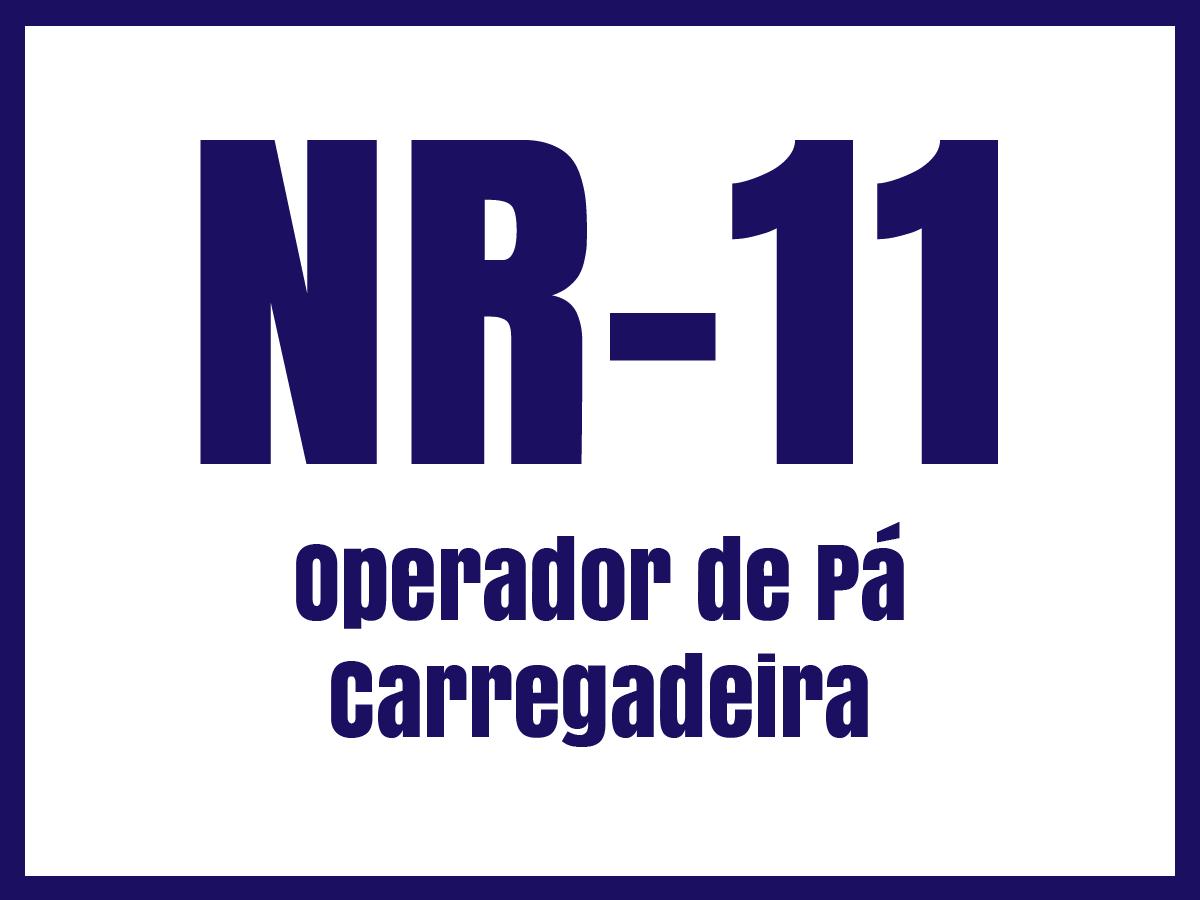 nr11o