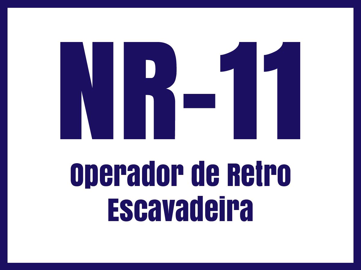 nr11p