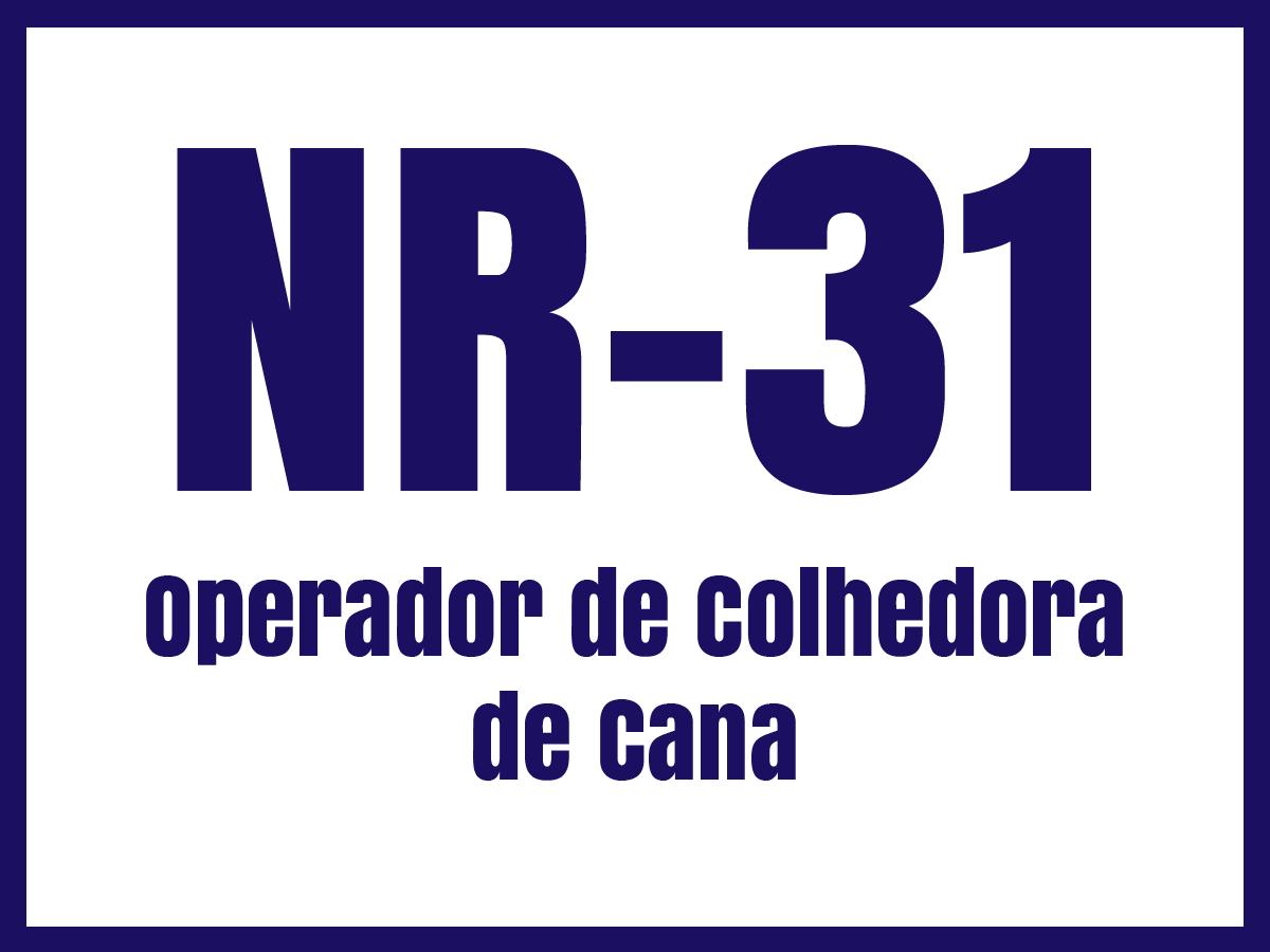 nr31e