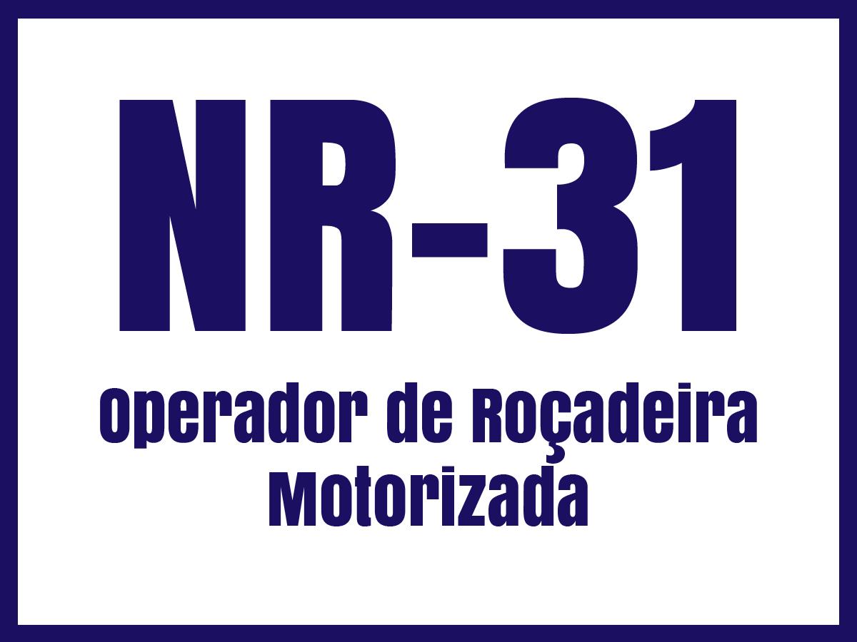 nr31g