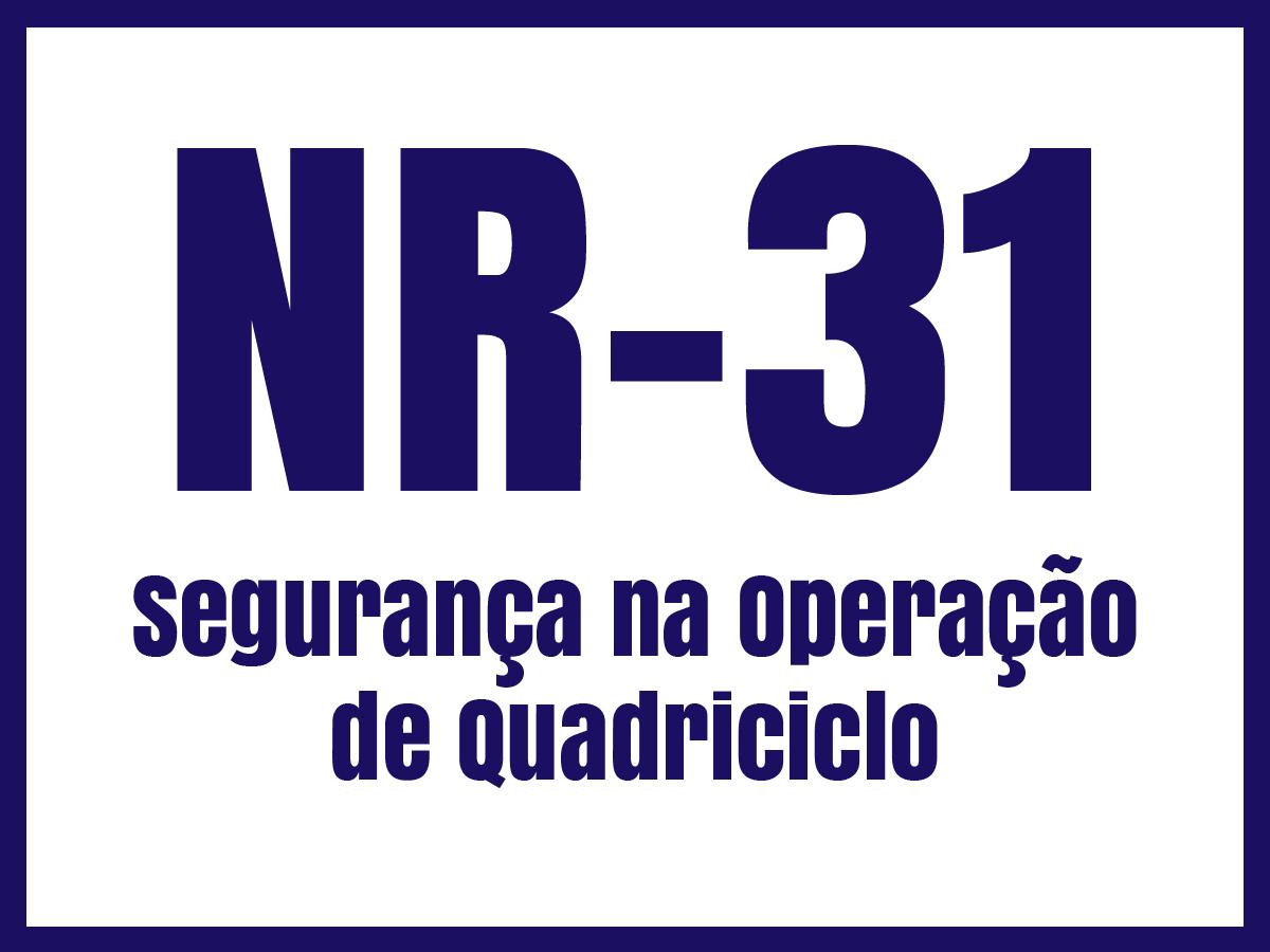 nr31l